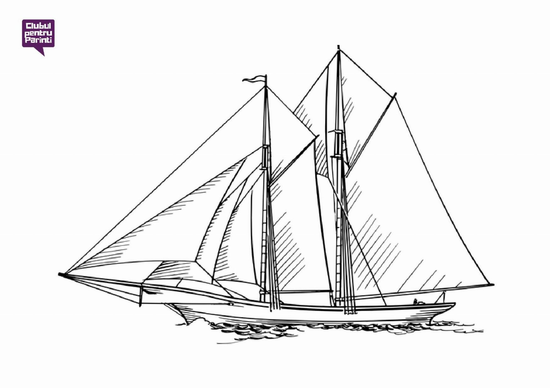 ambarcatiuni - barca 5