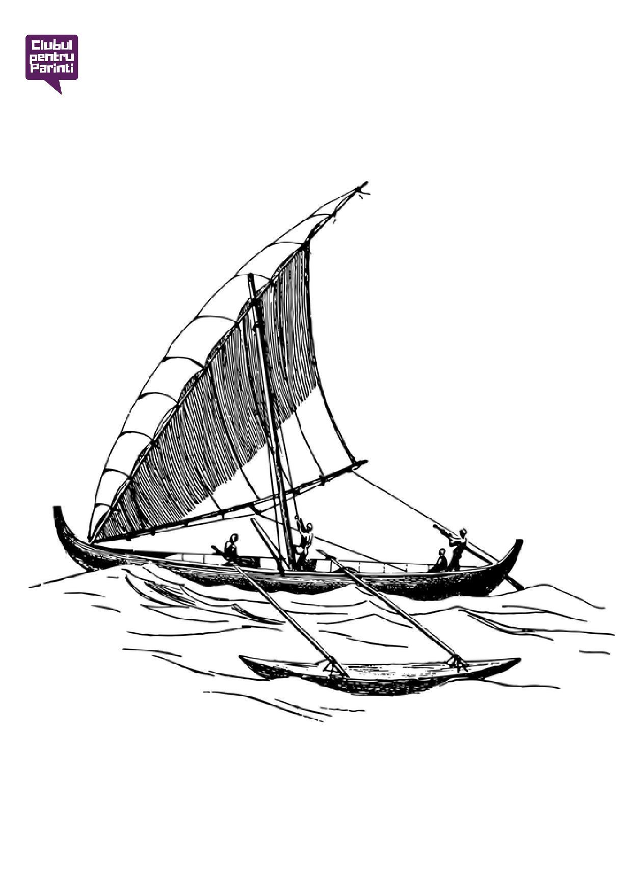 ambarcatiuni - barca