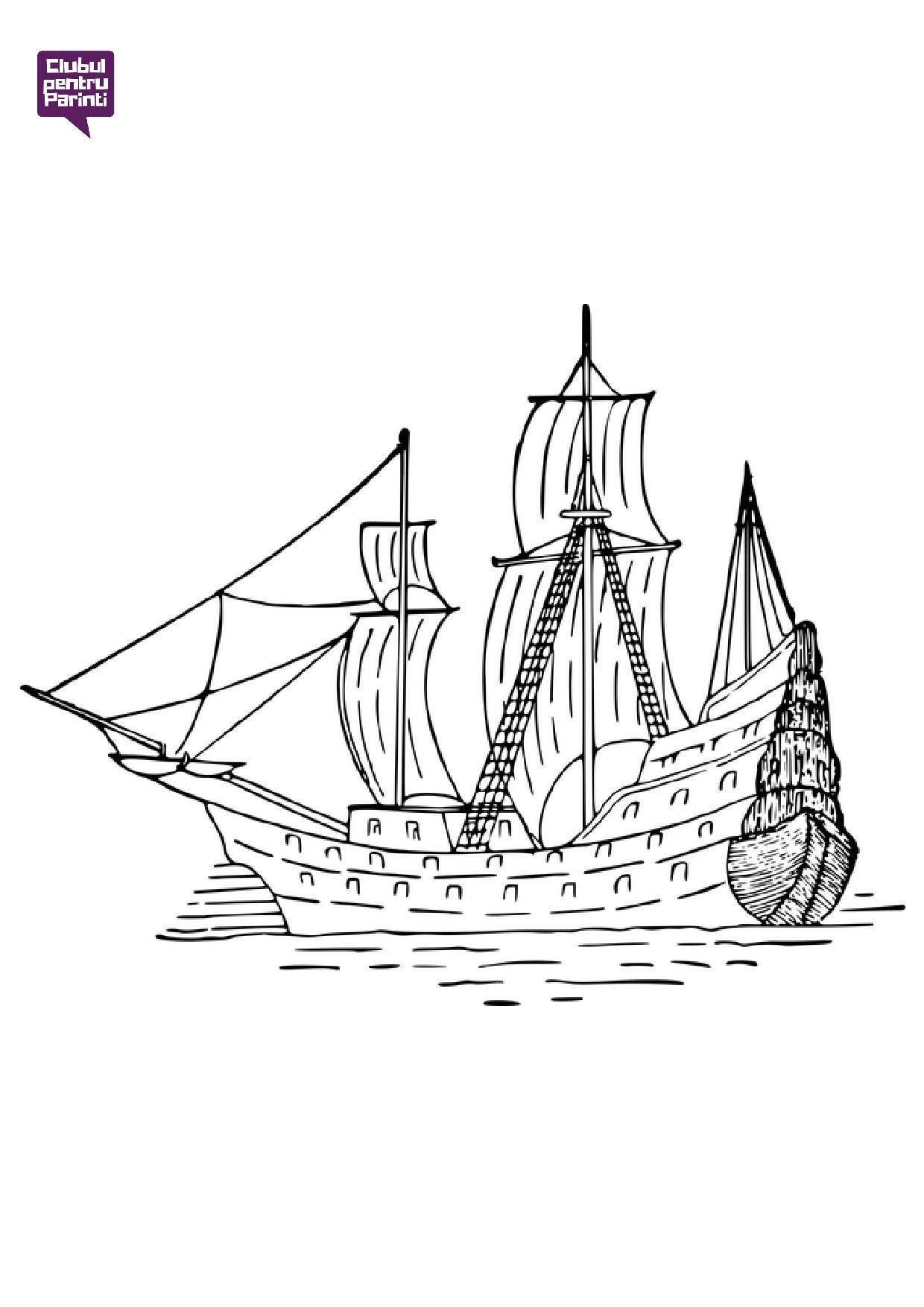 ambarcatiuni - barca 2