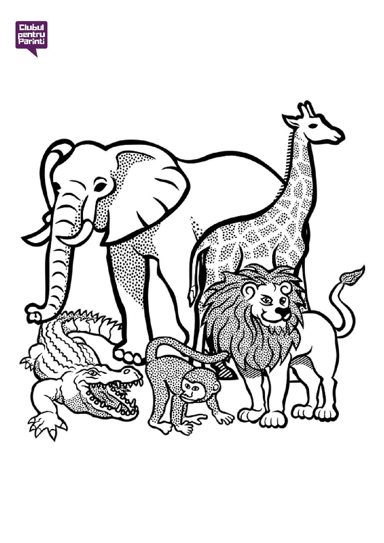 animale din jungla